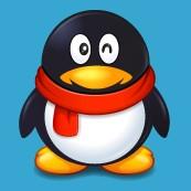 WP版手机QQ2012 2.0免费下载