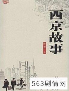 西京故事电视剧海报